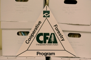 Cooperative Forestry Program, Chesapeake Corporation