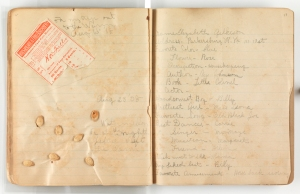 Watermelon seeds glued to the pages of the Gilkeson diary (MSS1 G3973a)