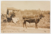 Aunt Betsy and her automobull. (Virginia Historical Society, 2000.92.421)